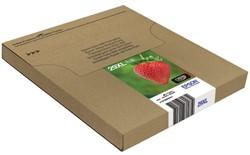 Inkcartridge Epson 29XL T299645 zwart+ 3 kleuren Easy Mail