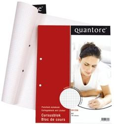 Cursusblok Quantore A4 2-gaats ruit 4x7mm commercial